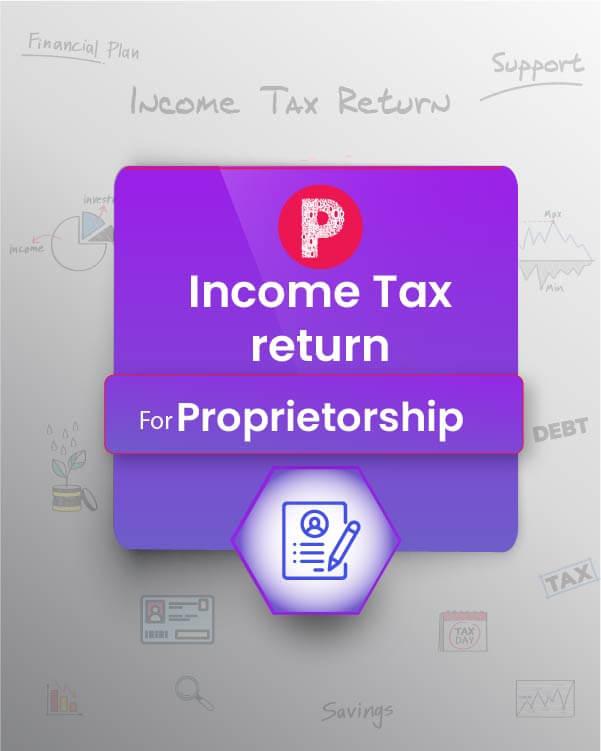 Income Tax - Business/Profession